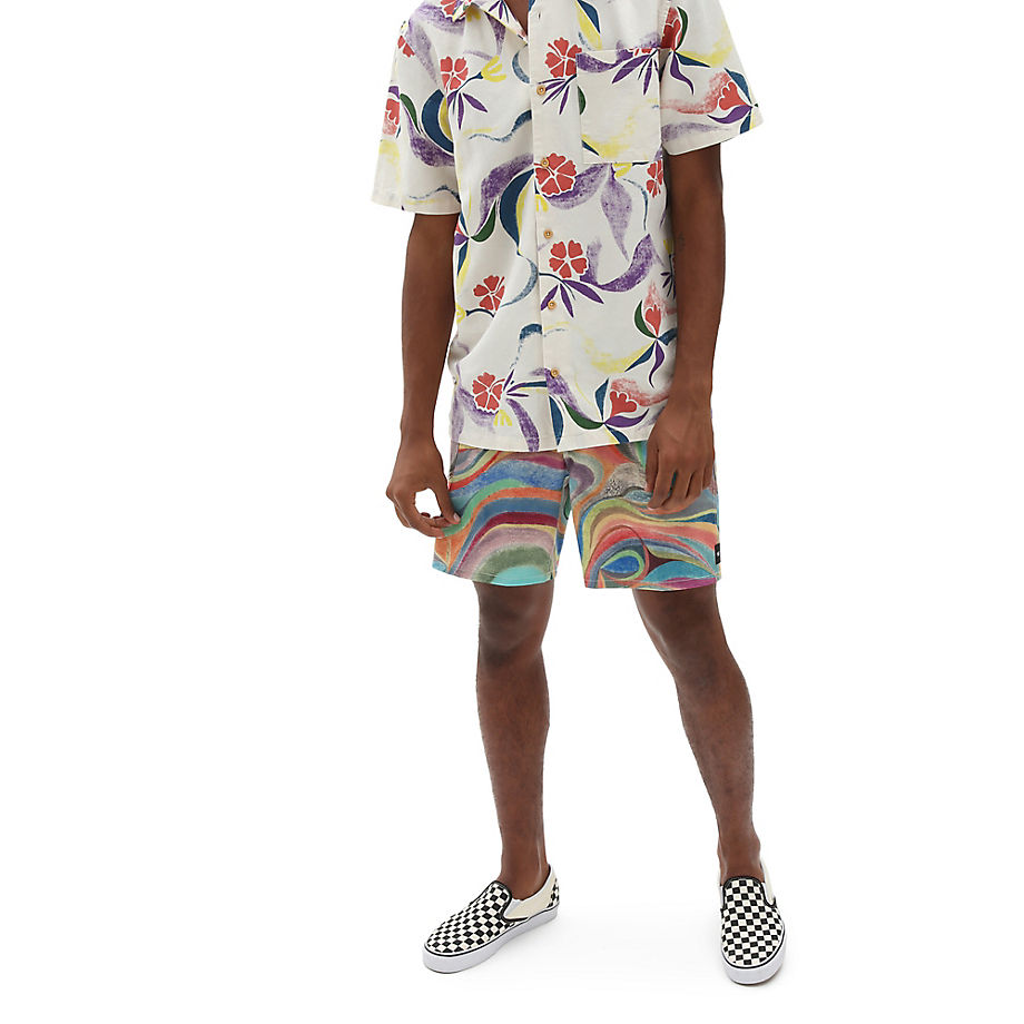 VANS Vans X Chris Johanson 43 Cm Boardshorts (johanson Swirl) Herren Multicolour, Größe 28